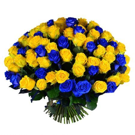 101 желто синяя