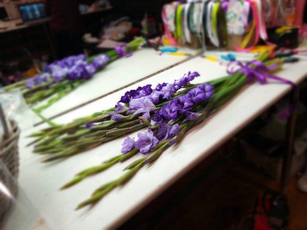 11 фиолетовых